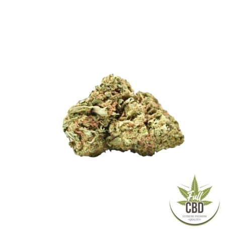 Fleur de CBD (cannabidiol) gelato